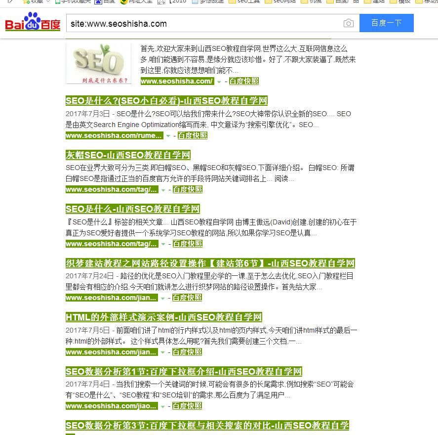 山西seo教程自学网的死链查询结果