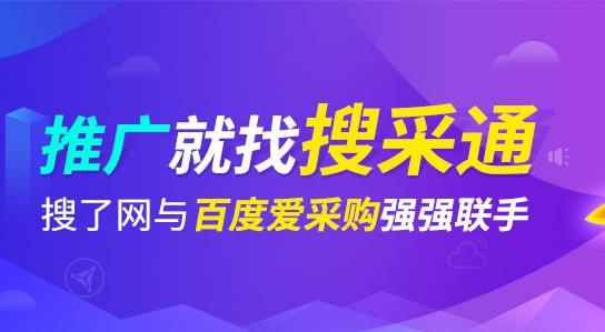 广西SEO外包公司搜了网络科技股份有限公司介绍