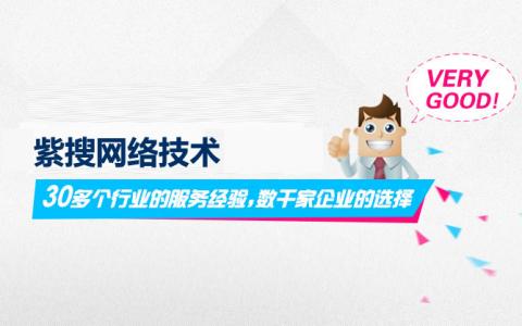 【重庆SEO外包公司】紫搜网络介绍