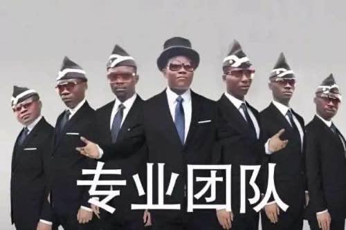 顺耐耐seo团队