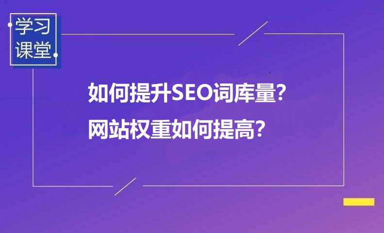 如何提升SEO词库量?(网站权重如何提高)