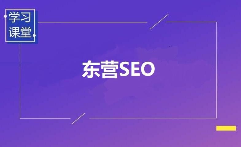 东营SEO外包服务公司东营林森网络科技有限公司